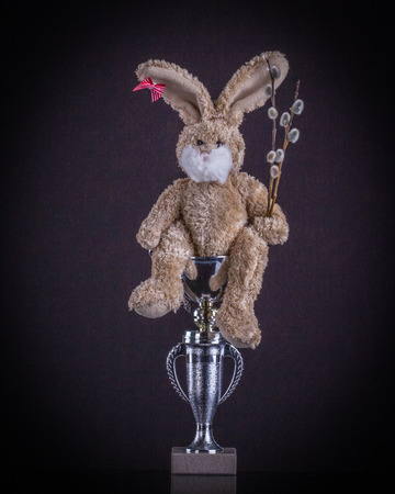 rabit: Easter sport concept. Teddy rabit top winner with willow branches scored a beaker.