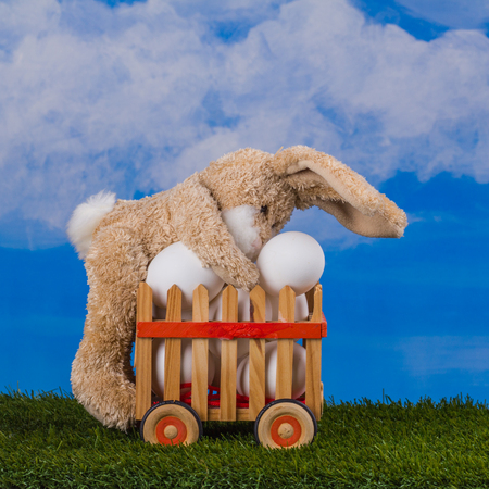 Easter scene, teddy rabbit, working with wooden cart of plenty eggs  on the blue sky background.