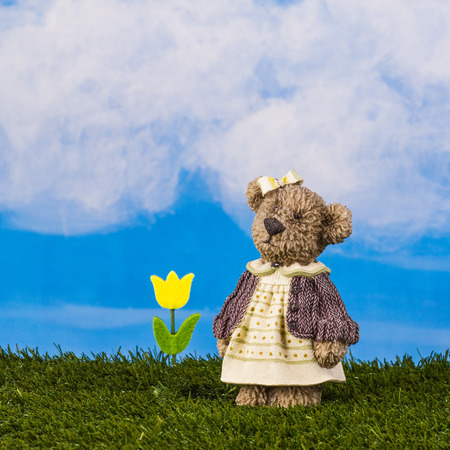 Dreamy toy bear with a yellow tulip is standing on the grass on the blue sky background.