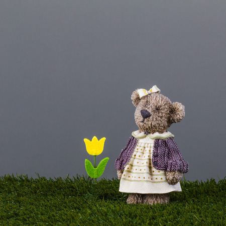 Toy bear with a yellow tulip is standing on the green grass