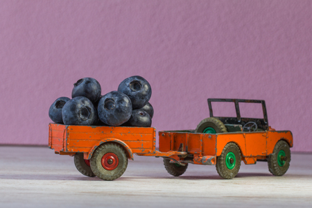 battered land: 3d small retro model of car Land Rover, used, heavy, toy of metal in orange with blackberries. Stock Photo