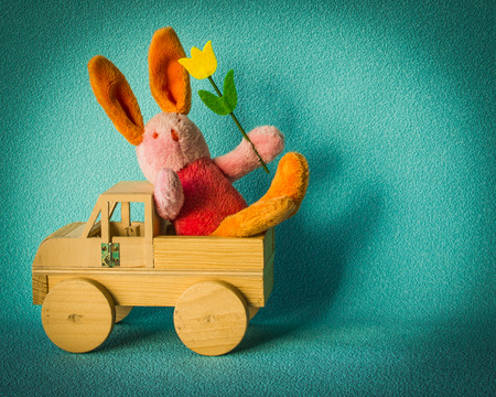 dexter: Teddy rabbit with tulip on the turquoise background sitting in the wooden car