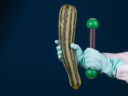 Gestreepte courgette en sportdomoor in de handen van meetapparaat met rubberhandschoen op de donkerblauwe achtergrond. Concept gezond voedsel.