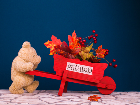 Teddy bear drive the red cart with text autumn and autumn leaves on the dark blue background, horizontal Stock Photo