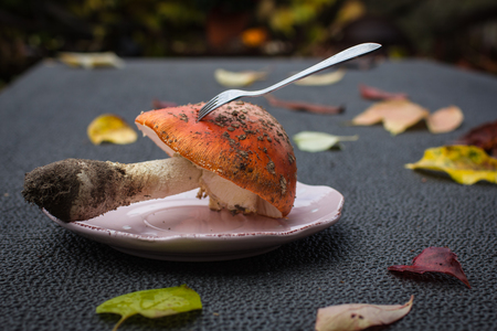 Closeup mushroom-amanita with a fork on a pink plate on a table with autumn leaves