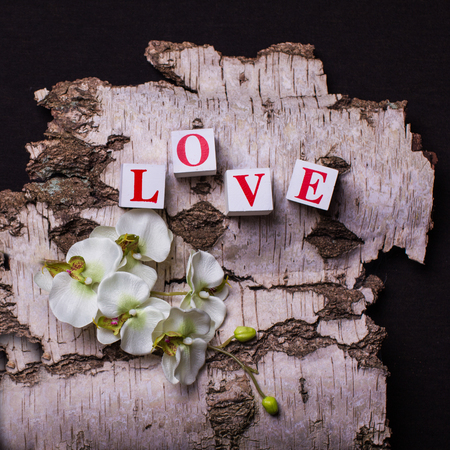 3d bricks with letters forming word love on the background of birch bark, close up.