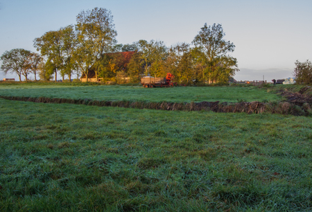 Farm of Friesland in the morning, province of Netherlands, Europe, October