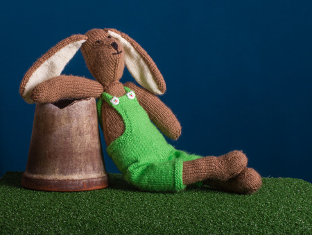Easter rabbit relaxed on the grass and dark blue background. Stock Photo