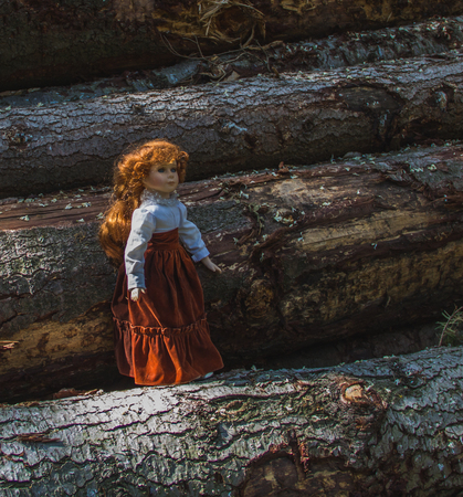 Doll/toy on the rough wooden background