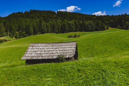 Beautiful alpine landscape with green meadows, and forests alpine wooden hut Фото со стока