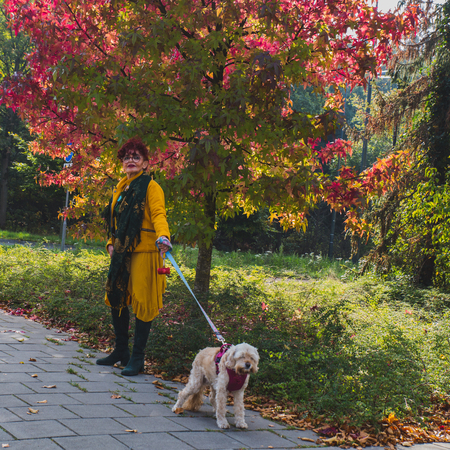 attractive fashionable bright eastern woman with a senior tired dog, street scene, autumn