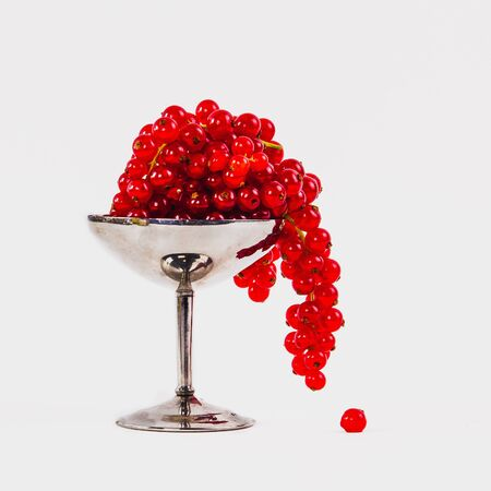 Beautiful red cranberries hanging over the edge of chrome vase on the white background 写真素材
