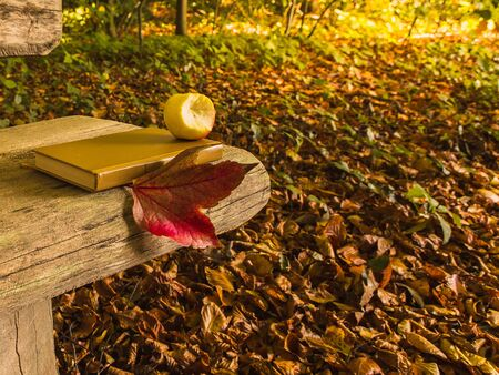 Park, fall foliage, an apple and a book lie on a wooden bench in the sunlight.