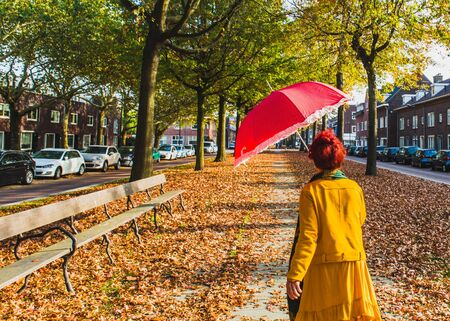 Beautiful romantic alley in a town with colorful trees and sunlight. fashionable woman with red hair and with red umbrella walking in autumn alley.