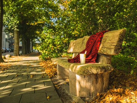 Autumn sunny day in the park, a paper cup with coffee and a red-black plaid shawl lie on a wooden bench.
