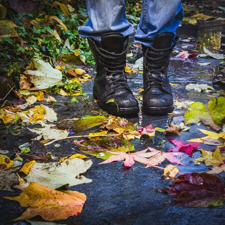 Old Reliable leather boots on the background of wet surface with autumn colorful different leaves. 写真素材