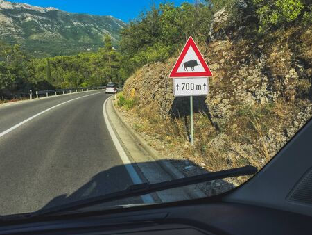 Traffic sign warning about wild boars on a beautiful mountain road background in Croatia.