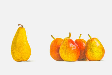 A group of four round pears and one separate oblong pear on a white background with copy space. Standard-Bild