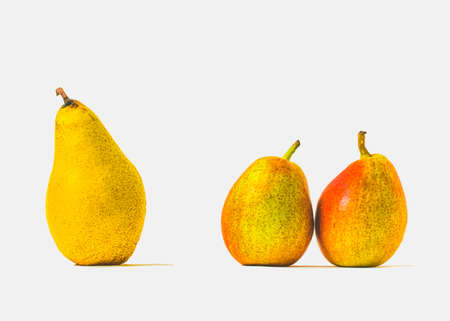 Group of three fresh pears in a row, white background with copy space Standard-Bild