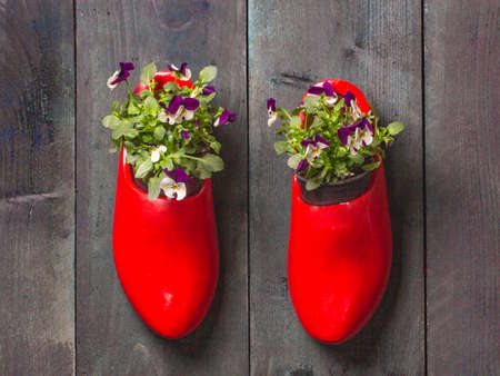 Two red wooden clogs with pansies wooden background on a rough wooden background. 版權商用圖片