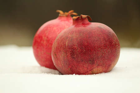 Ripe red-brown pomegranates lie in the snow outdoors on a winter day. Still life of pomegranates in the snow. Stok Fotoğraf
