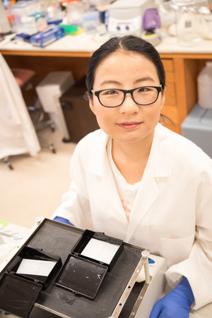 Scientist in the lab working with Western Blot