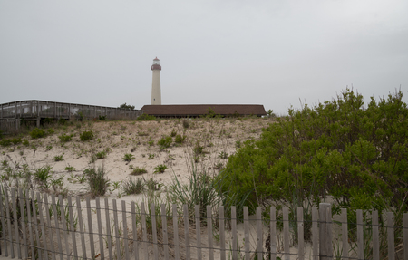 Cape May point beach landscape