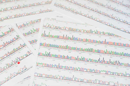 guanine: DNA sequencing results print-out