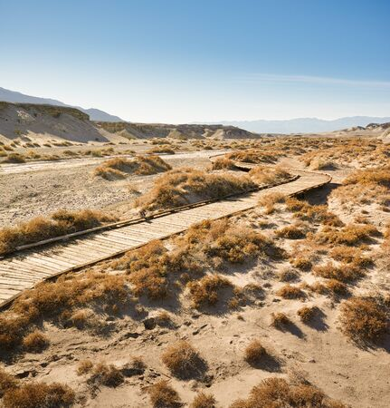 path through desert