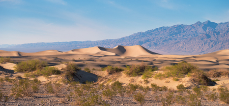 np: sand dunes in Death Valley NP