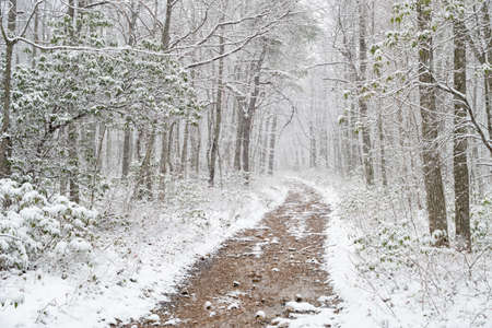 appalachian trail: winter Appalachian trail Stock Photo