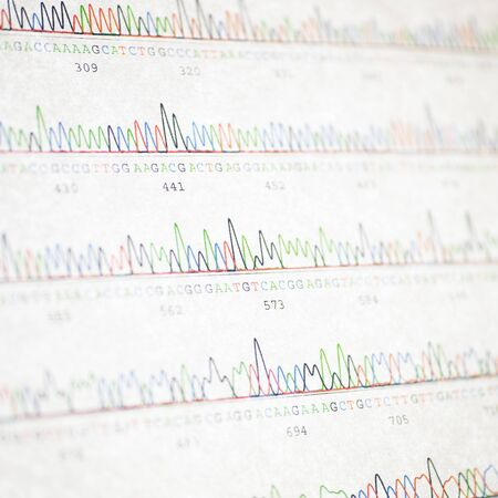 nucleotide: DNA sequencing results Stock Photo