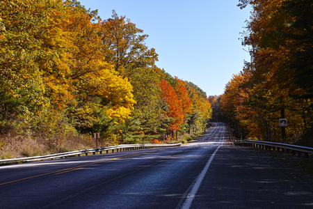scenic drive: Longhouse scenic drive in the Allegheny National Forest Stock Photo