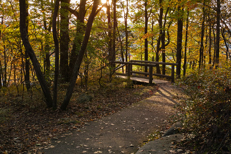 allegheny: hiking trail in the fall season
