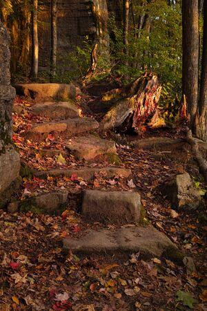 hiking trail in the fall season