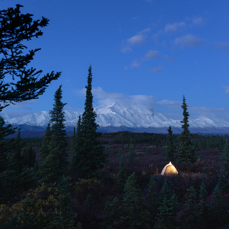 camping in the Denali National Park Stock Photo - 102894160