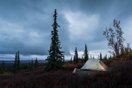 camping in the Denali National Park, Wonder lake campground Stock Photo