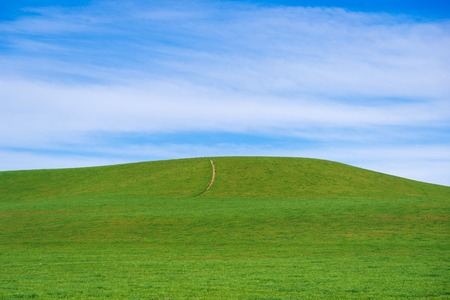 panoramic view of nice green hill on blue sky background, New Zealand Stock Photo