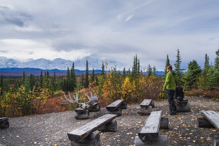 Camping in Denali National park, facing Mt Mckinley Stock Photo