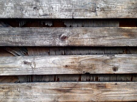 background texture: The wood texture background