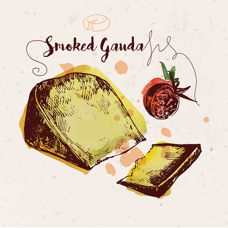 craft paper: Hand drawn smoked gouda cheese and cherry tomato with watercolor stains on craft paper texture. Ink drawn illustration. Vintage style.