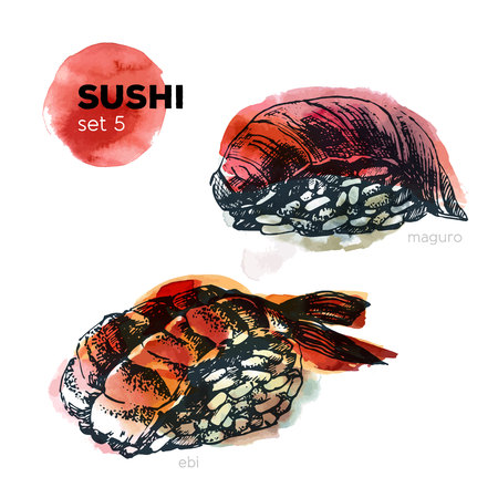 maguro: Hand Drawn Sushi Set. Japanese cuisine. Including maguro and ebi. Ink illustration with watercolor background. Vintage style.