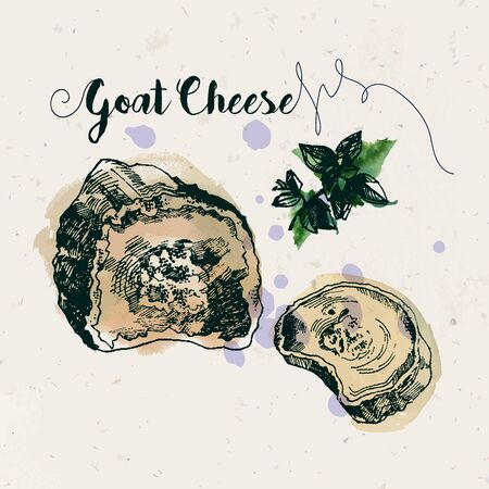 goat cheese: Hand drawn goat cheese and fenugreek leaves with watercolor stains on craft paper texture. Ink drawn illustration. Vintage style. Illustration