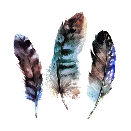 Watercolor Feathers Set. Hand drawn illustration in boho style. Rustic design elements for wedding invitation, greeting card and t-shirt. Isolated on white background