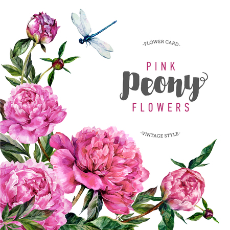 Hand drawn watercolor greeting card template with pink peonies, green leaves and dragonfly. Botanical illustration in trendy vintage style.