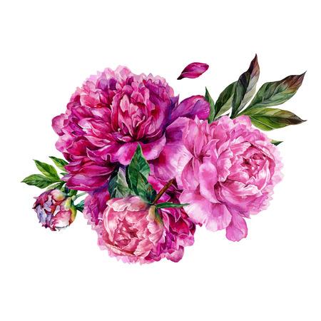 Waterverfpioenen boeket. Hand getekende illustratie geïsoleerd op een witte achtergrond. Botanische illustratie in trendy vintage stijl. Vector Illustratie