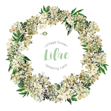 Hand drawn watercolor white lilac with green leaves floral wreath isolated on white background. Realistic illustration in trendy vintage style.