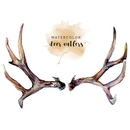 Watercolor Deer Antlers Isolated On white Background. Reindeer Horns. Nature Wildlife Decoration. Boho Design. Vintage style.