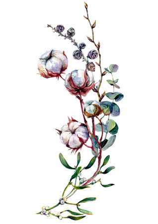 Watercolor Floral Decoration made of Cotton Plant, Eucalyptus Greenery, Larch Twigs and Mistletoe Isolated on White. Boho Style Arrangement. Botanical Vintage Wedding Decor. Scandinavian Nature Design