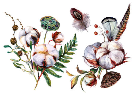 Watercolor Botanical Illustration of Cotton Decorations. Rustic Boho Style Wedding Arrangements Isolated on White. Hand Drawn Bouquet of Cotton Bolls, Fern, and Feathers in Scandinavian Style. Stock Illustratie